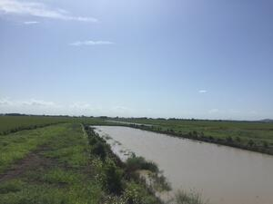 Dams overflowing