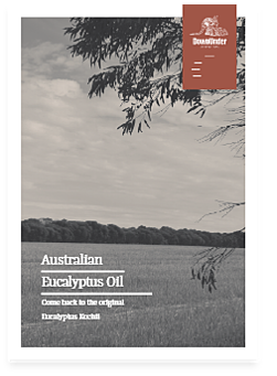 eucalyptus-oil-bc-1