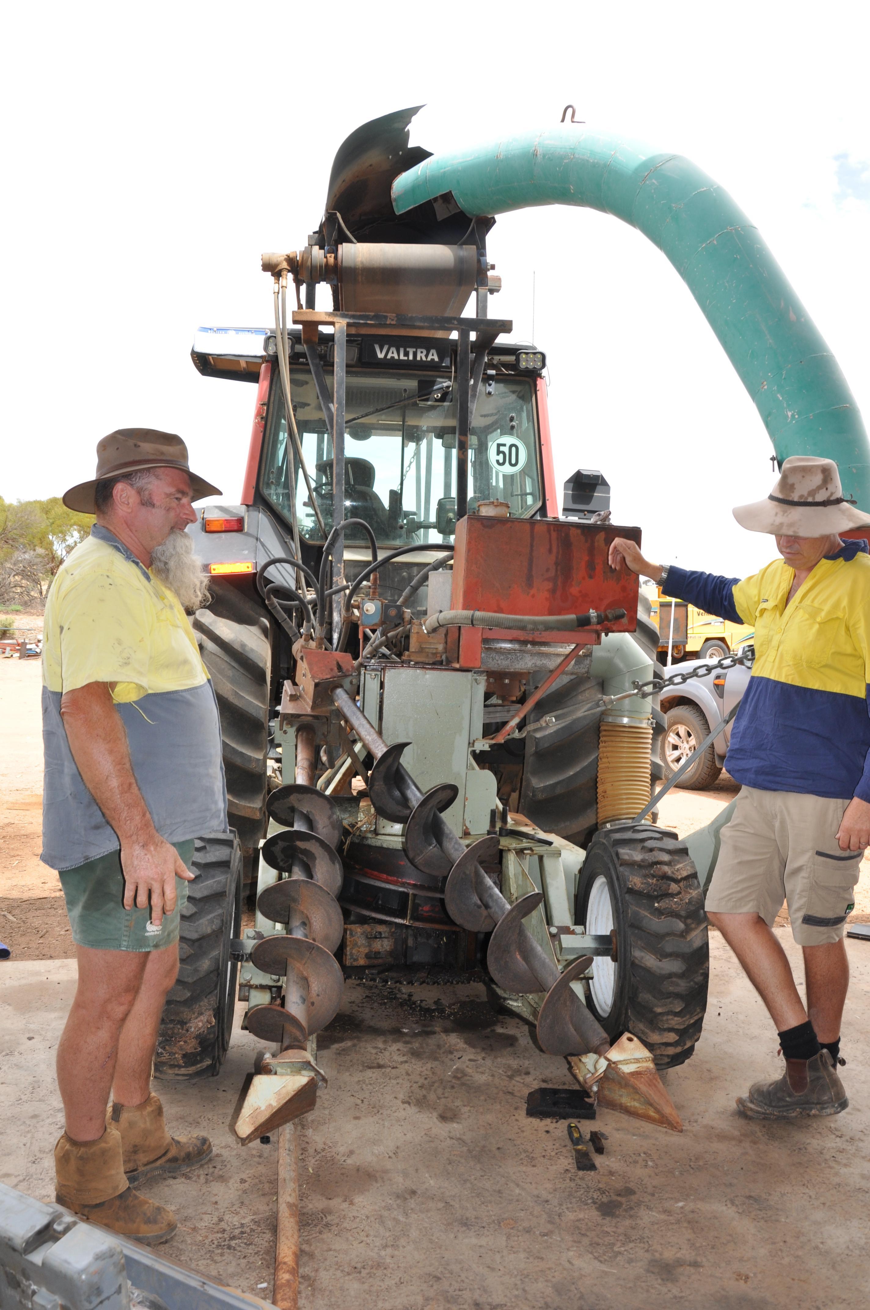 Eucalyptus Oil in Australia returns.