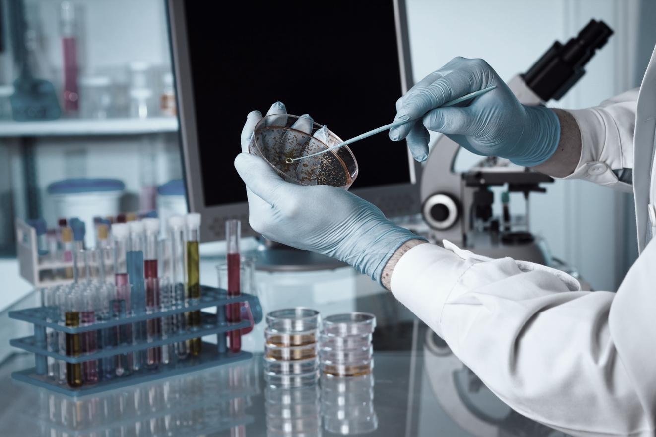 Manuka Oil is a strong gram positive bacteria killer